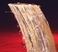 brown asbestos amosite sample